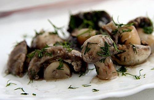 Сочетание грибов с пряностями
