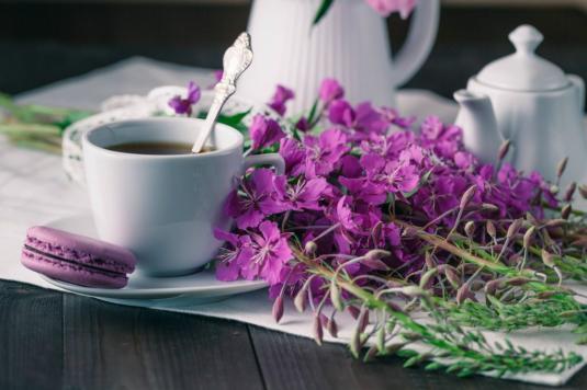 рецепт чая с иван чая